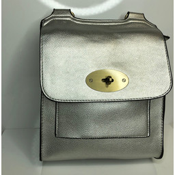Lucy Cobb Crossbody Bag in Silver