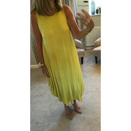 Lucy Cobb Tara Sleeveless Panel Dress in Yellow