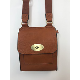 Lucy Cobb Crossbody Bag in Tan