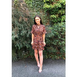 Lucy Cobb Evie Animal Print Dress - Animal Print