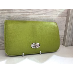 LC Bags Silver Buckle Travel Wallet in Lime