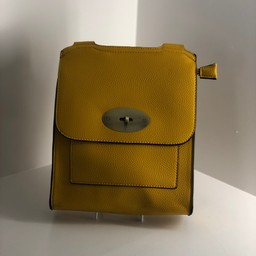 Lucy Cobb Crossbody Bag in Yellow