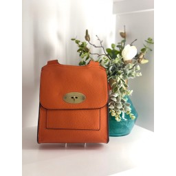 Lucy Cobb Bags Crossbody Bag in Orange
