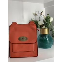 Lucy Cobb Bags Crossbody Bag in Coral