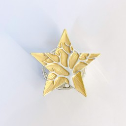 Lucy Cobb Accessories Star Tree Of Life Strong Magnetic Brooch - Yellow
