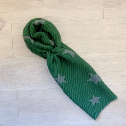Lucy Cobb Accessories Zodiac Star Scarf in Green