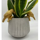 Animal Pot Hangers (2pk) - Greyson Toucan