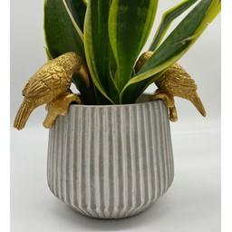 Lucy Cobb Homeware Animal Pot Hangers (2pk) in Greyson Toucan