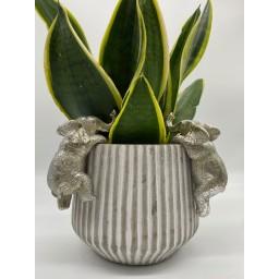 Lucy Cobb Homeware Animal Pot Hangers (2pk) in Myles Elephant Silver